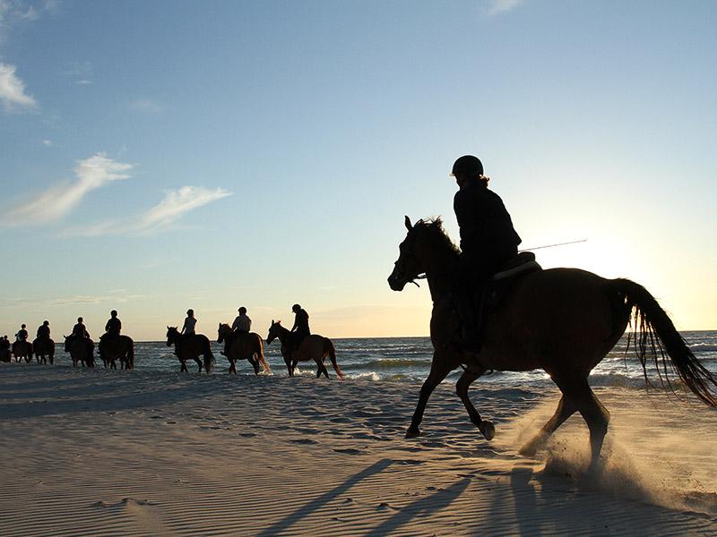 Rutas a caballo Ándara viajes